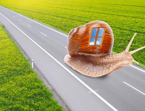 Co vše kryje chytře sjednané cestovní pojištění