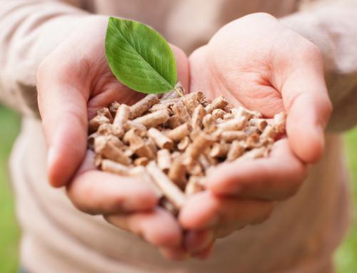 Zelená úsporám – jak na dotace v roce 2014