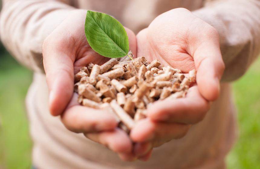 Zelená úsporám - jak na dotace v roce 2014